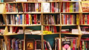 Crisi, poche entrate e mancanza di liquidità: l'84% delle librerie rischia la chiusura