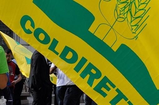 Coldiretti, Cibus: l'Italia ha ottenuto l'autosufficienza alimentare