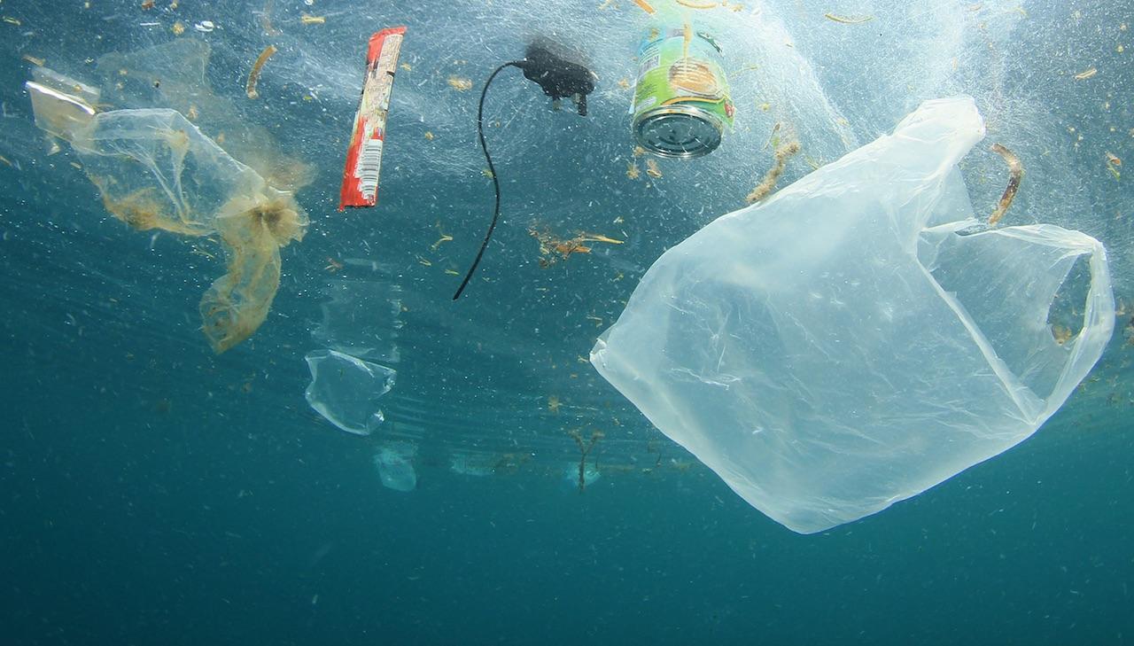 La plastica negli oceani potrebbe triplicare entro il 2040, una ricerca pubblicata sulla rivista Science