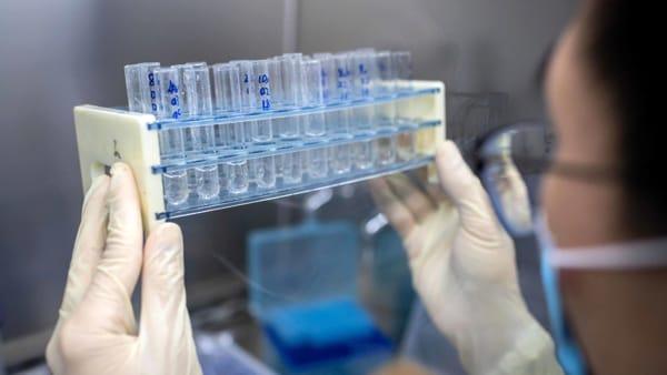 Usa,Filardo:«Eccezionale quanto fatto per sviluppo vaccino»