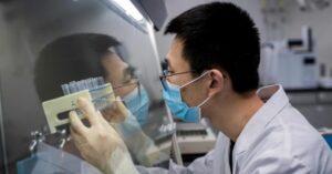 Secondo Bloomberg il vaccino cinese della Sinovac potrebbe rivelarsi efficace contro il nuovo coronavirus