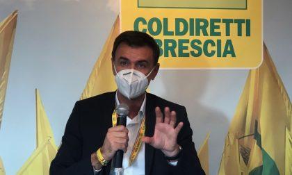 Ettore Prandini Presidente Coldiretti