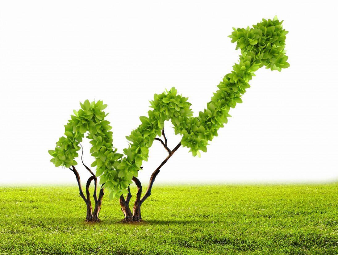 CBI: il 2020 è stato l'anno dei green bond