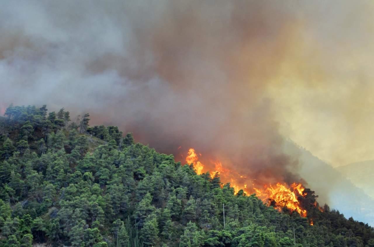 Incendi boschivi approvato decreto-legge
